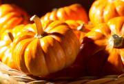 halloween quizfragen